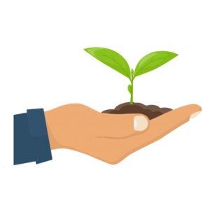 Linea Fonteverde: cura naturale